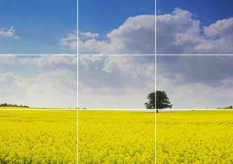 Contoh Rule of Thirds